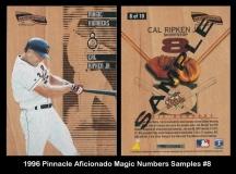 1996 Pinnacle Aficionado Magic Numbers Samples #8