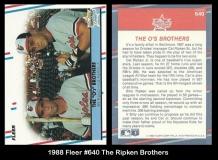 1988 Fleer #640 The Ripken Brothers