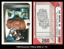 1989-Bowman-Tiffany-260