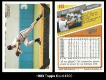 1993 Topps Gold #300