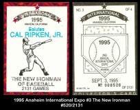 1995 Anaheim International Expo #3 The New Ironman