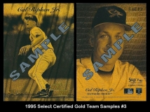 1995 Select Certified Gold Team Samples #3