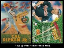 1995 Sportflix Hammer Team #HT5