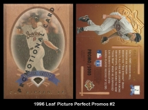 1996 Leaf Picture Perfect Promos #2