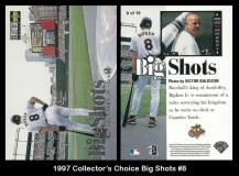 1997 Collectors Choice Big Shots #8