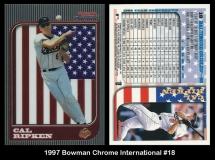 1997 Bowman Chrome International #18