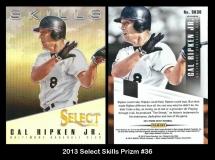 2013 Select Skills Prizm #36