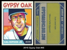 2015 Gypsy Oak #45
