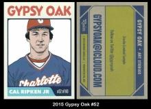 2015 Gypsy Oak #52